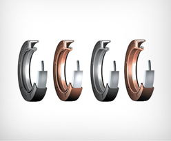 rotary shaft seals